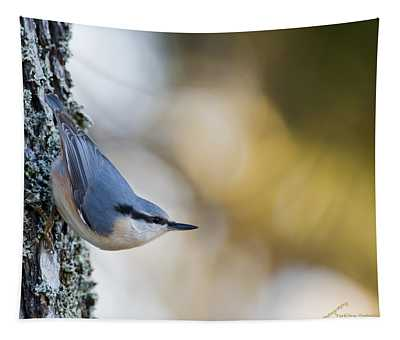 Nuthatch In The Classical Position Tapestry
