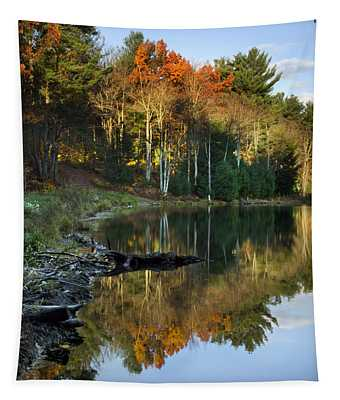 Tapestry featuring the photograph Oakley Corners State Forest by Christina Rollo