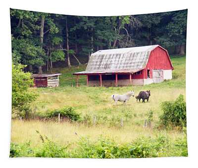 Old Red Barn West Of Brevard Nc Tapestry