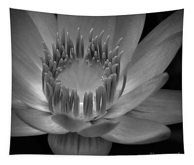 Om Mani Padme Hum Hail To The Jewel In The Lotus Tapestry