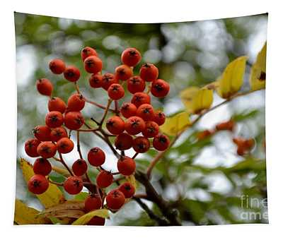 Orange Autumn Berries Tapestry