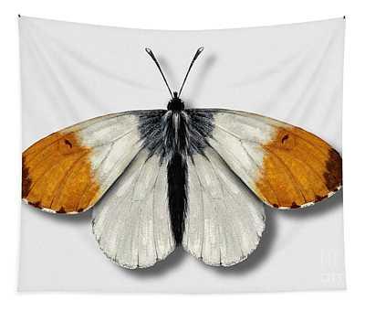 Orange Tip Butterfly - Anthocharis Cardamines Naturalistic Painting - Nettersheim Eifel Tapestry