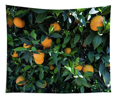 Oranges Growing On A Tree, California Tapestry