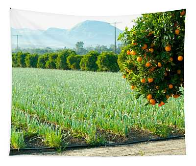 Oranges On A Tree With Onions Crop Tapestry