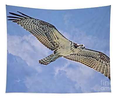 Osprey 91711 Tapestry