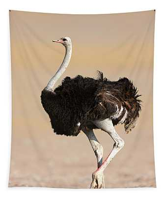 Ostrich Tapestry