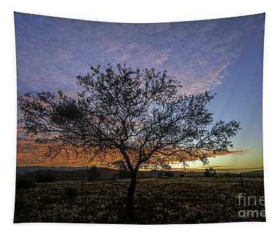Outback Sunset  Tapestry