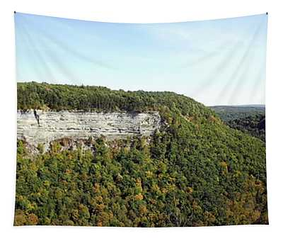 Panorama Of Cliff At Letchworth State Park Tapestry