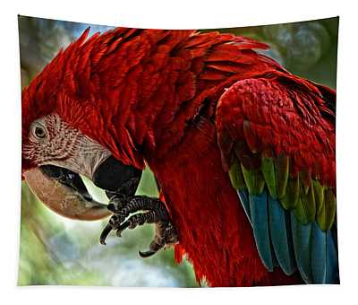 Parrot Preen Hdr Tapestry