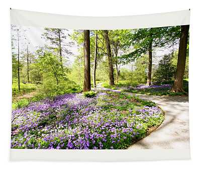 Path Of Serenity Tapestry