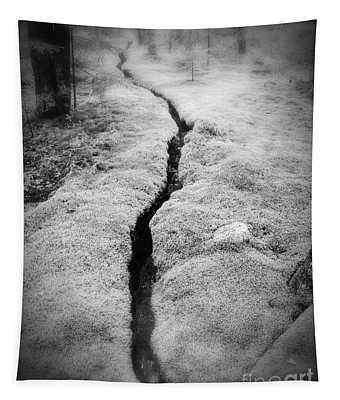 Path Taken Tapestry