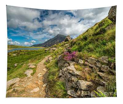 Path To Lake Idwal Tapestry