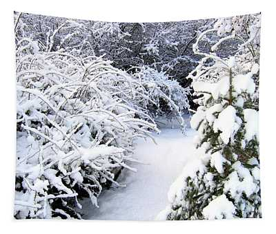 Peaceful Winter Path Tapestry