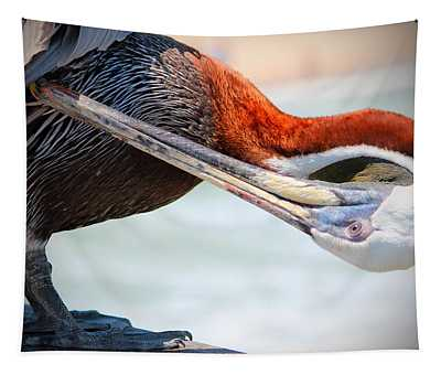 Pelican Itch Tapestry