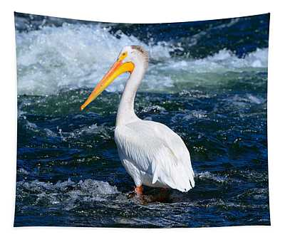 Pelican Portrait Tapestry