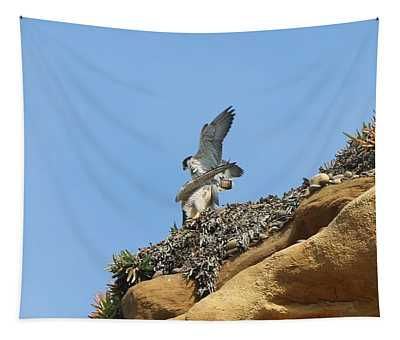Peregrine Falcons - 3 Tapestry