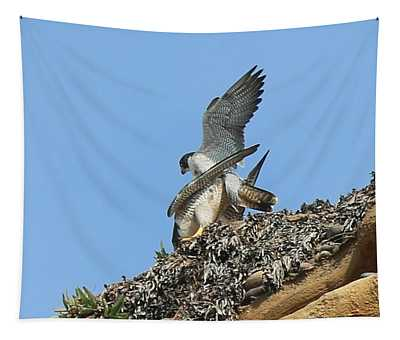 Peregrine Falcons - 5 Tapestry