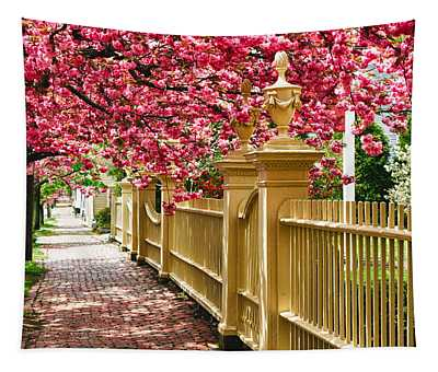 Perfect Time For A Spring Walk Tapestry