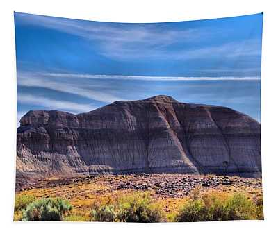 Petrified Forest Landscape Tapestry