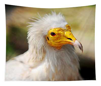 Pharaoh Chicken. Egyptian Vulture Tapestry