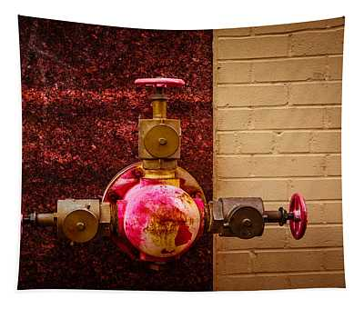 Pink And Rusted Tapestry