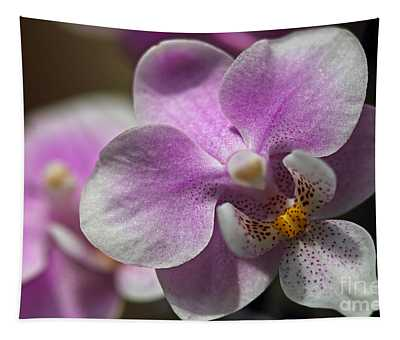 Pink And White Orchid Tapestry