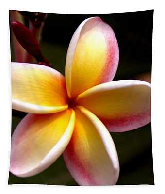Pink And Yellow Plumeria Tapestry