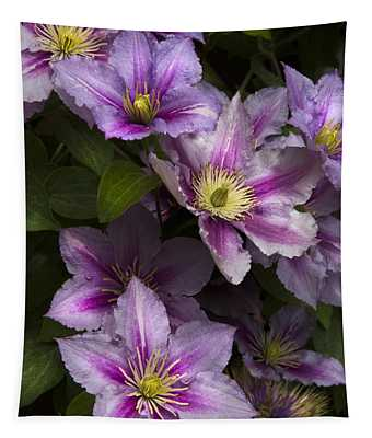Pink Clematis Tapestry
