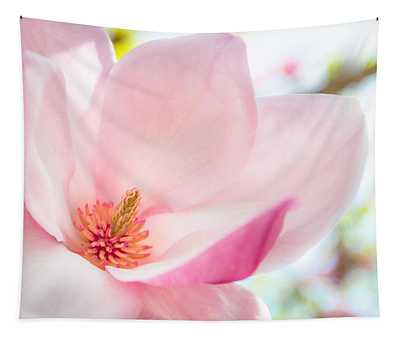Pink Magnolia Tapestry