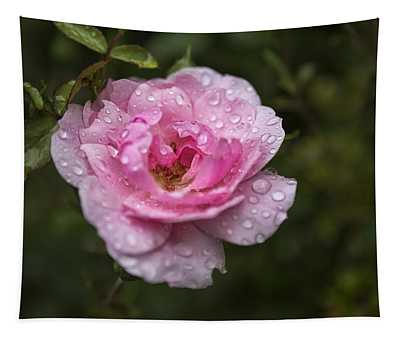 Pink Rose With Raindrops Tapestry