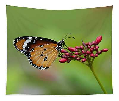 Plain Tiger Or African Monarch Butterfly Dthn0008 Tapestry
