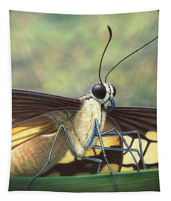 Portrait Of A Butterfly Tapestry