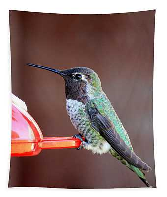 Portrait Of A Hummingbird Tapestry