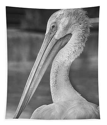 Portrait Of A Pelican Tapestry
