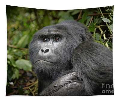 Portrait Of A Silverback Mountain Gorilla Tapestry