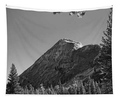 Pothole Dome In Yosemite Tapestry