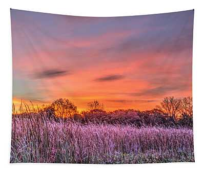 Moraine Hills State Park Moments Before Sunrise Tapestry