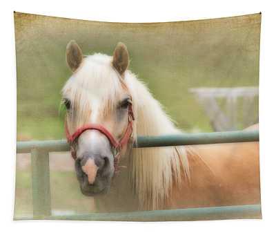 Pretty Palomino Horse Photography Tapestry
