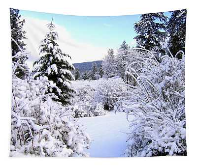 Pristine Winter Trail Tapestry
