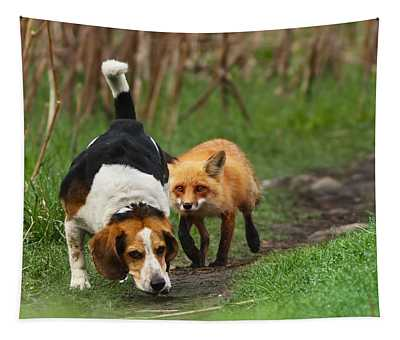 Foxes Wall Tapestries