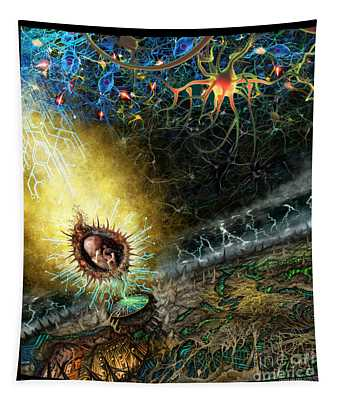 Programmable Evolution  Tapestry