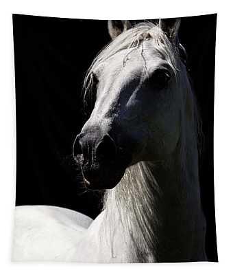 Proud Stallion Tapestry