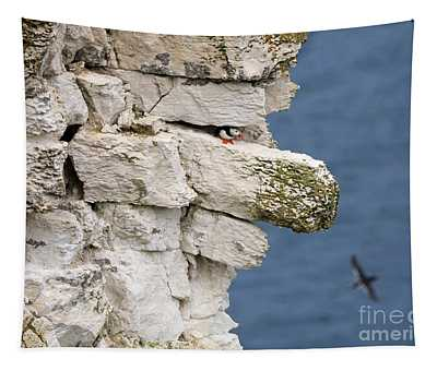 Puffin Peeps From Under A Rock Tapestry