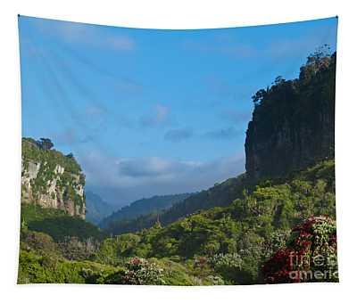 Punakaiki River Valley In Paparoa Np In New Zealand Tapestry
