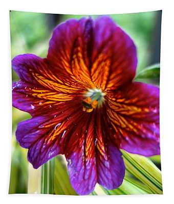 Purple And Orange Tapestry