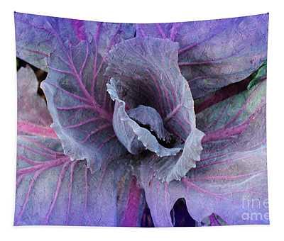 Purple Cabbage - Vegetable - Garden Tapestry