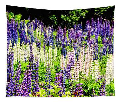 Purple Interrupted Tapestry