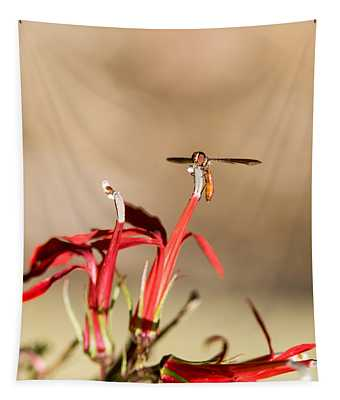 Pyrgotidae Resting On Flower Tapestry