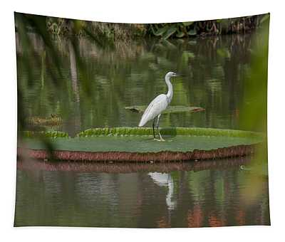 Queen Victoria Water Lily Pad With Little Egret Dthb1618 Tapestry