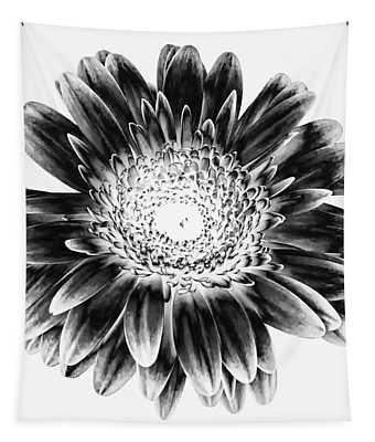 Radiant Solarized Tapestry